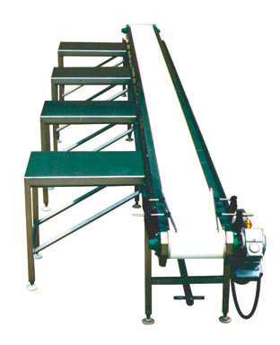 Dodman Assembly Conveyor Equipment image