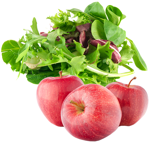salads and fruit processing equipment and machines