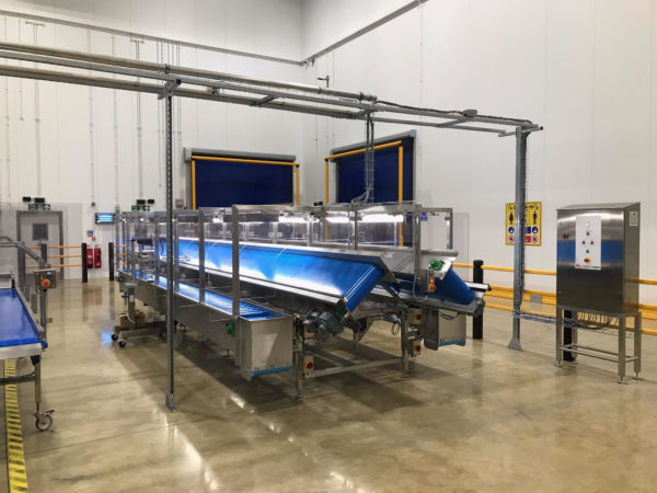 COVID safe conveyor