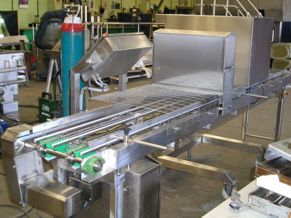Chain Conveyor 4